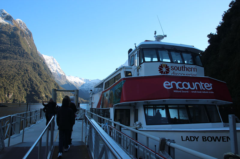 Southern Discoveries cruise in Milford Sound